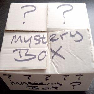 Mystery Box Free ppl,Ralph L ,target, Zara (529$)